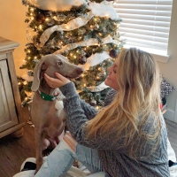 Puppy Gift Guide